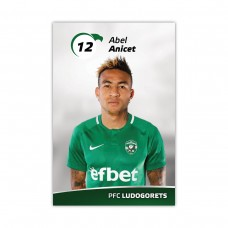 Player Card - Abel Anicet