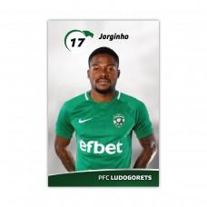 Player Card - Jorjinho