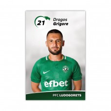 Player Card - Dragos Grigore