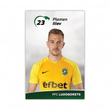 Player Card - Plamen Iliev
