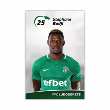 Player Card - Stephane Badji
