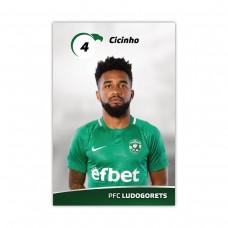 Player Card - Cicinho