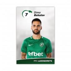 Player Card - Dimo Bakalov