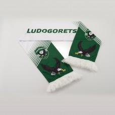 Ludogorets Scarf