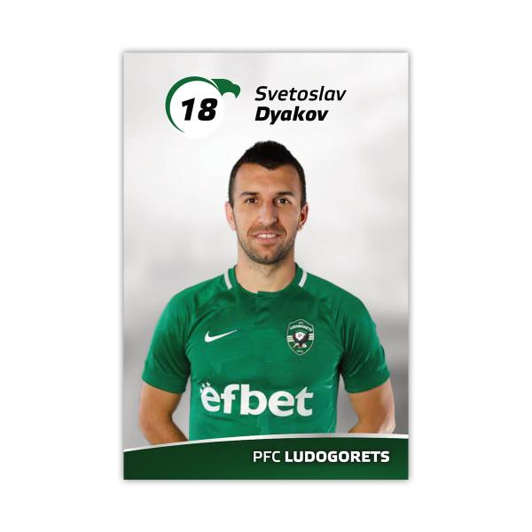 Player Card - Svetoslav Dyakov