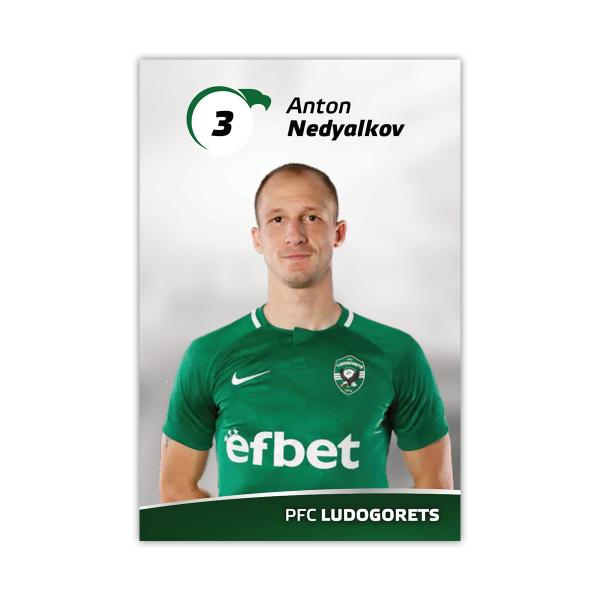 Player Card - Anton Nedyalkov