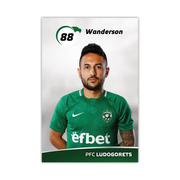 Player Card - Wanderson